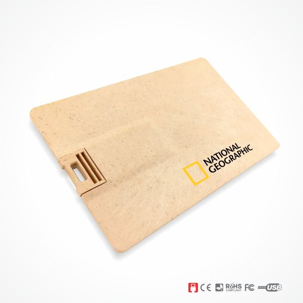 Wheat Straw USB Flash Drive Wholesler Malaysia - Main